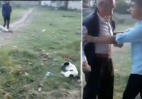 Önce köpeği, sonra da çocuğu taşladı!
