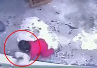 Kedi bebeğin hayatını böyle kurtardı