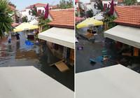 İzmir Seferihisar sokaklarını denizden taşan sular bastı