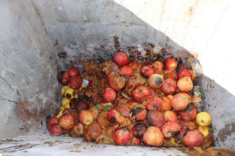 Çürük elmadan meyve suyu iddiası gerçek çıkmadı - Sayfa 3