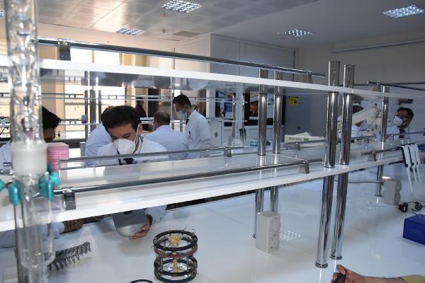 Türk bilim adamları, kudret narının kemik kırığı tedavisinde kullanılabileceğini ispatladı - Sayfa 2