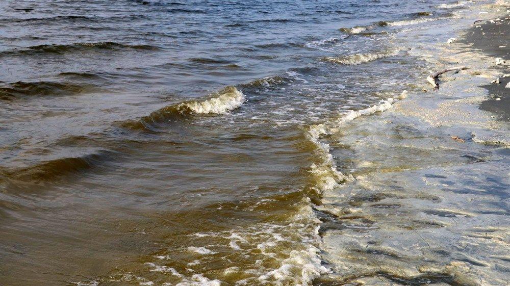 Burdur Gölü'nde korkutan görüntü: 'İlkbahar patlaması' - Sayfa 4