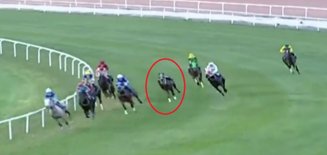 Adana'da yarış sırasında attan düşen jokey Samet Erkuş'un durumu ciddiyetini koruyor - Sayfa 4