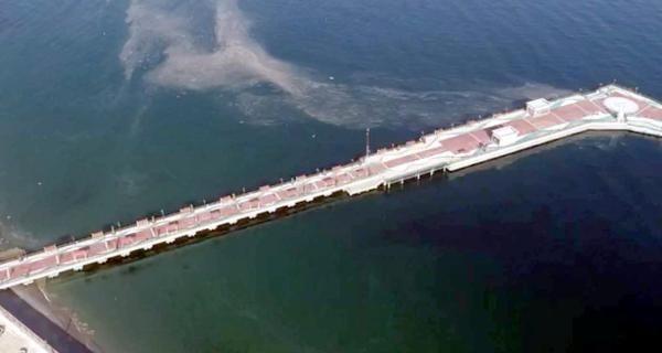 Deniz salyası Tekirdağ'da yeniden ortaya çıktı - Sayfa 1