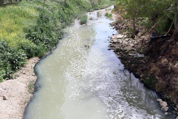 Çimendere'de toplu balık ölümleri tedirgin etti - Sayfa 1