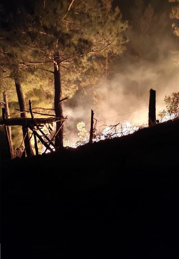 Adana Kozan'da orman yangını - Sayfa 2