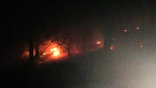 Adana Kozan'da orman yangını - Sayfa 4