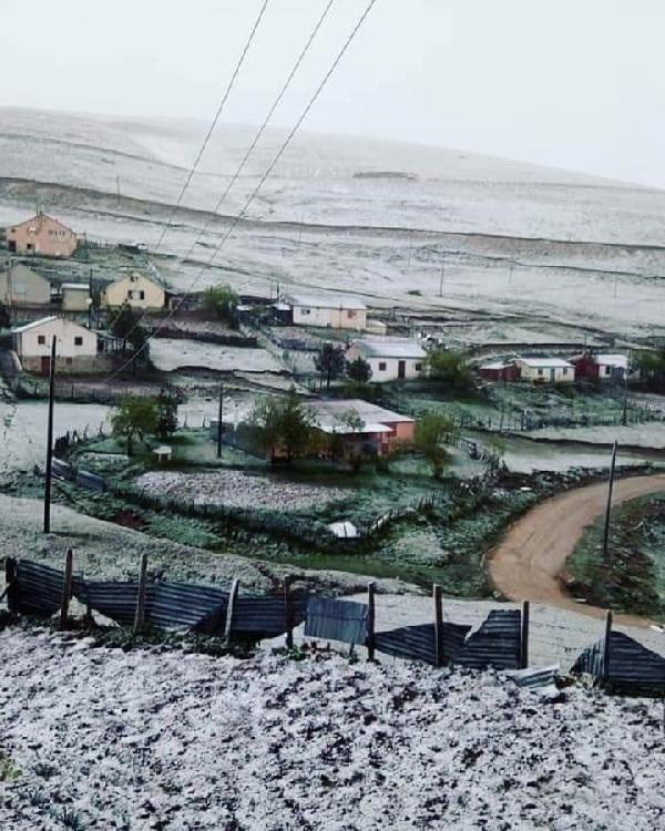 Karadeniz'de yazın 'kar' sürprizi, yaylalar beyaza büründü - Sayfa 1