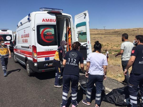 Şanlıurfa'da katliam gibi kaza; 5 kişi öldü - Sayfa 3