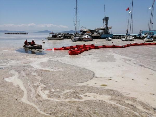 Çevre ve Şehircilik Bakanlığı ilk adımı attı; Deniz salyası temizliği başladı - Sayfa 4