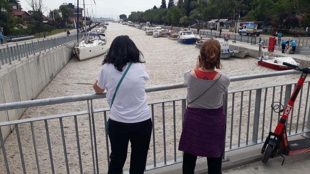 İstanbul'un sahilleri müsilajla doldu: 95 yıldır böyle bir şey görmedim - Sayfa 1