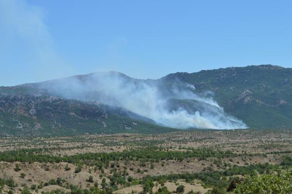 Görese Dağı'ndaki yangın 4 gündür sürüyor - Sayfa 1