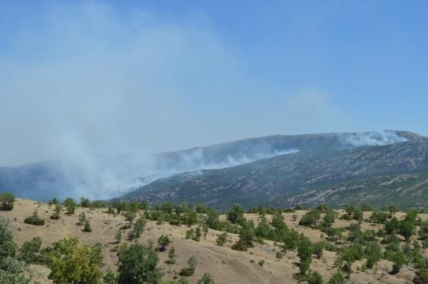 Görese Dağı'ndaki yangın 4 gündür sürüyor - Sayfa 2