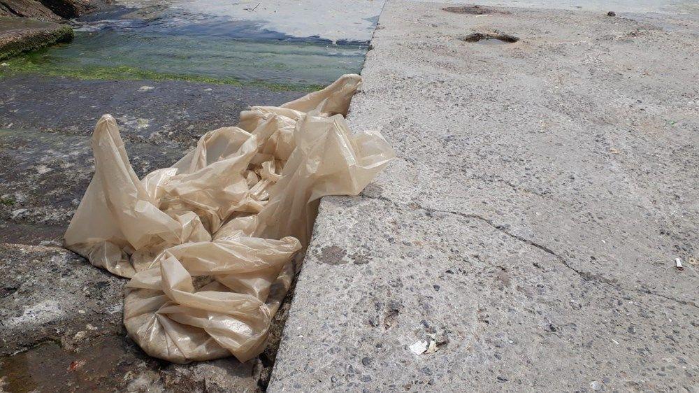 İstanbul'un sahilleri müsilajla doldu: 95 yıldır böyle bir şey görmedim - Sayfa 2