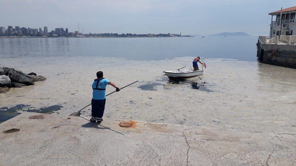 İstanbul'un sahilleri müsilajla doldu: 95 yıldır böyle bir şey görmedim - Sayfa 3
