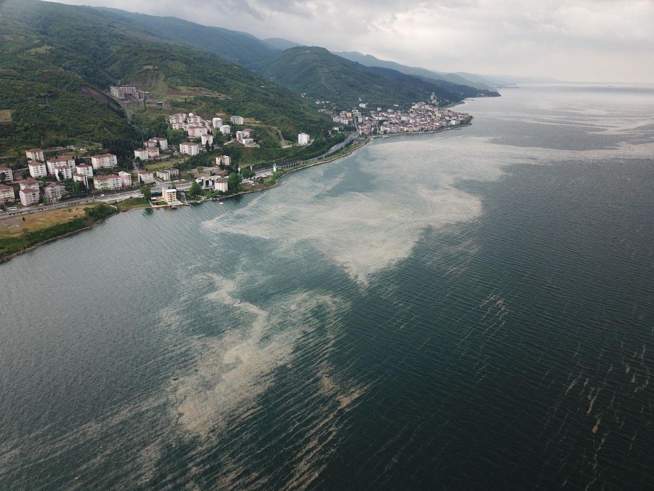 Marmara'daki müsilaj için yeni umut: Reaktif oksijen - Sayfa 4