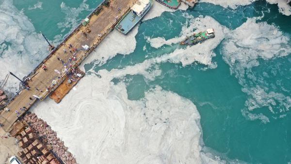 Yalova kıyılarında müsilaj temizliği başladı - Sayfa 1