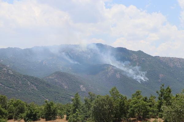Görese Dağı'nda 5 gün süren orman yangınında 30 hektar alan yandı - Sayfa 1
