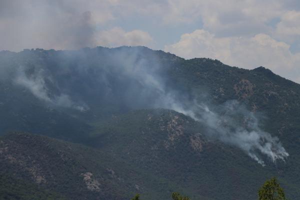 Görese Dağı'nda 5 gün süren orman yangınında 30 hektar alan yandı - Sayfa 2