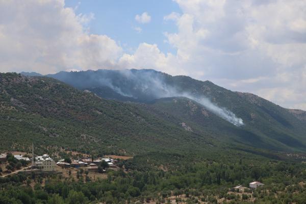 Görese Dağı'nda 5 gün süren orman yangınında 30 hektar alan yandı - Sayfa 3