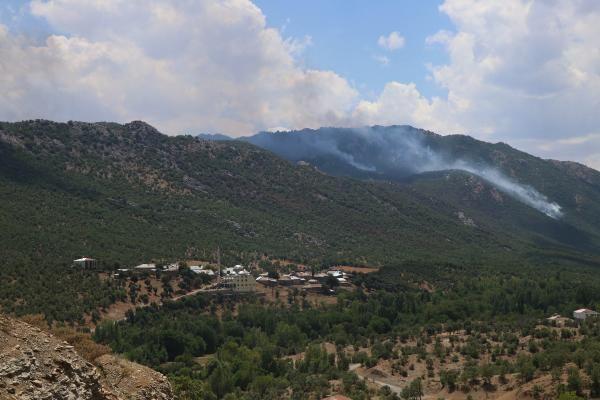 Görese Dağı'nda 5 gün süren orman yangınında 30 hektar alan yandı - Sayfa 4