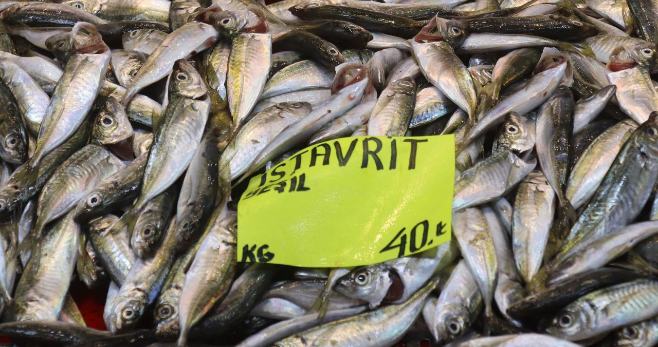 Müsilaj balıklarda zehir etkisi yaratır mı? - Sayfa 3