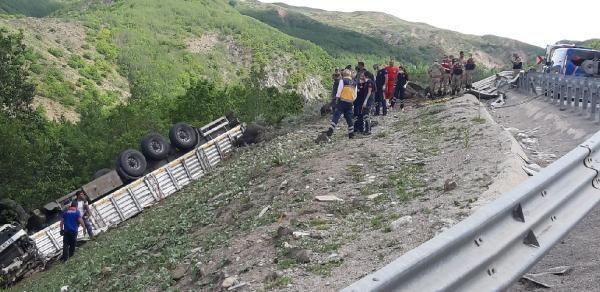 Kurbanlıkları taşıyan TIR devrildi; Sürücü öldü 17 hayvan telef oldu - Sayfa 2