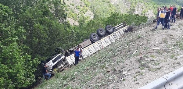 Kurbanlıkları taşıyan TIR devrildi; Sürücü öldü 17 hayvan telef oldu - Sayfa 3