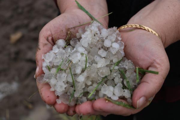 Afyon'da dolu tarım arazilerine zarar verdi - Sayfa 4