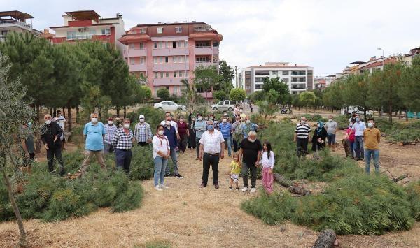 Özel arazideki ağaç kesimi tepki çekti - Sayfa 1