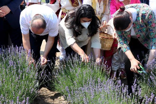 Edirne'de 'Lavanta Tarla Günleri' ile mor bahçeler şenlendi - Sayfa 4