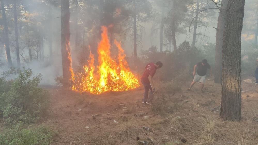 Orman kahramanları çalılarla yangının büyümesini engelledi - Sayfa 4