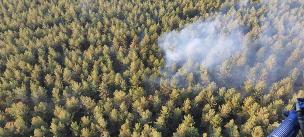 Orman kahramanları çalılarla yangının büyümesini engelledi - Sayfa 3