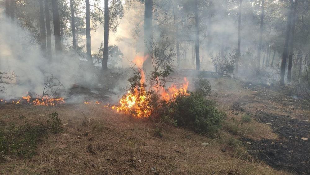 Orman kahramanları çalılarla yangının büyümesini engelledi - Sayfa 2