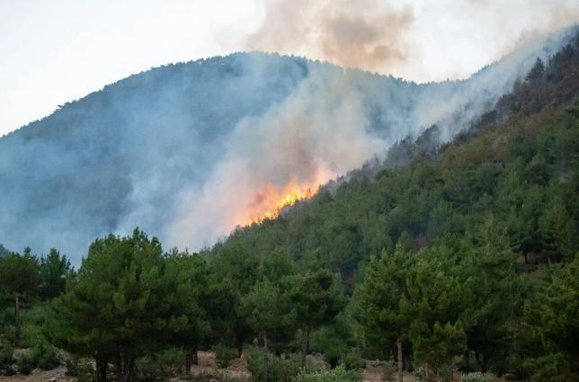 Hatay ve Mersin'de orman yangını - Sayfa 3