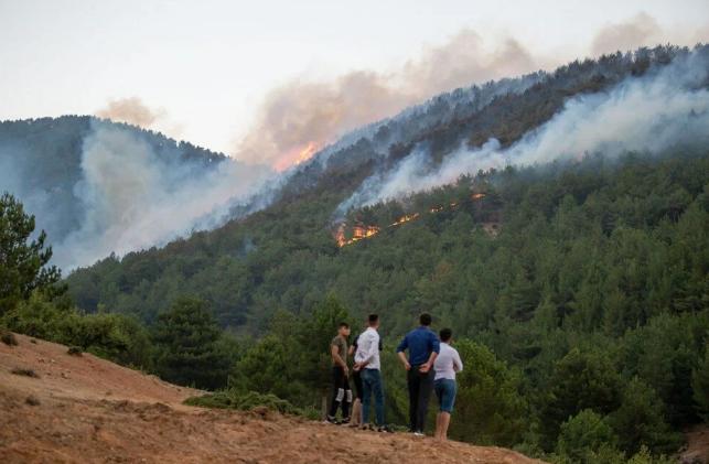 Hatay ve Mersin'de orman yangını - Sayfa 2