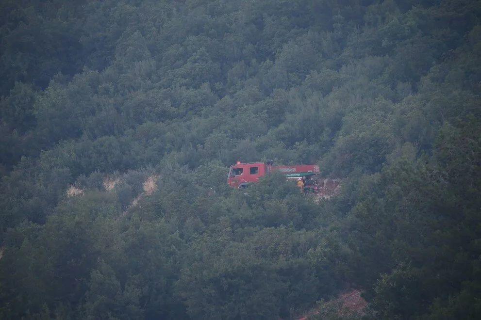 Mersin ve Hatay'daki orman yangınları kontrol altına alındı - Sayfa 4