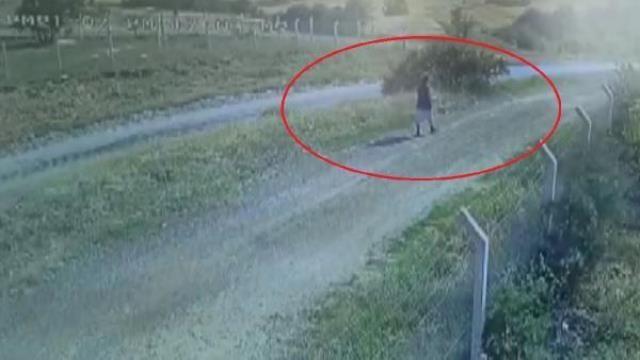 Kaçan kurbanlığın peşinden giden tıp öğrencisi Onur Alp Eker ölü bulundu - Sayfa 2