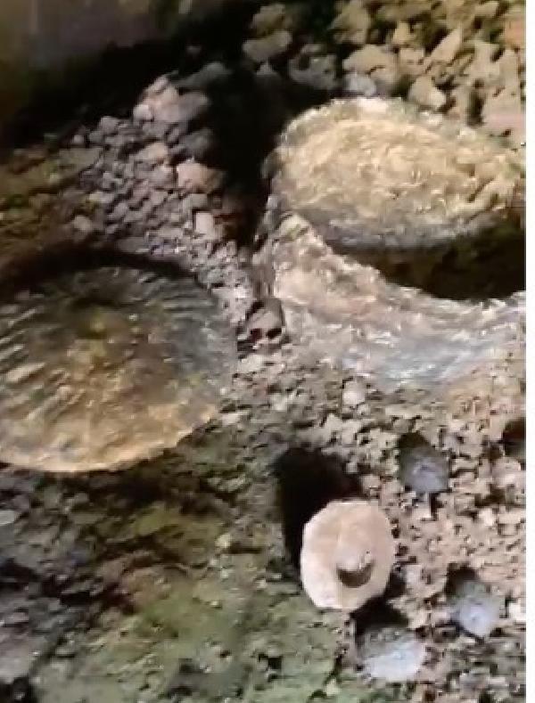 Çobanın keşfettiği mağarada M.Ö. 10 bin yılından kalma 'yiyecek' bulundu - Sayfa 4