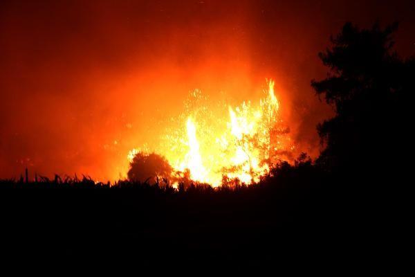 Osmaniye'de çıkan orman yangını sürüyor! - Sayfa 2