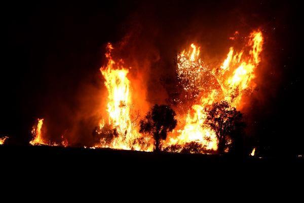 Osmaniye'de çıkan orman yangını sürüyor! - Sayfa 3