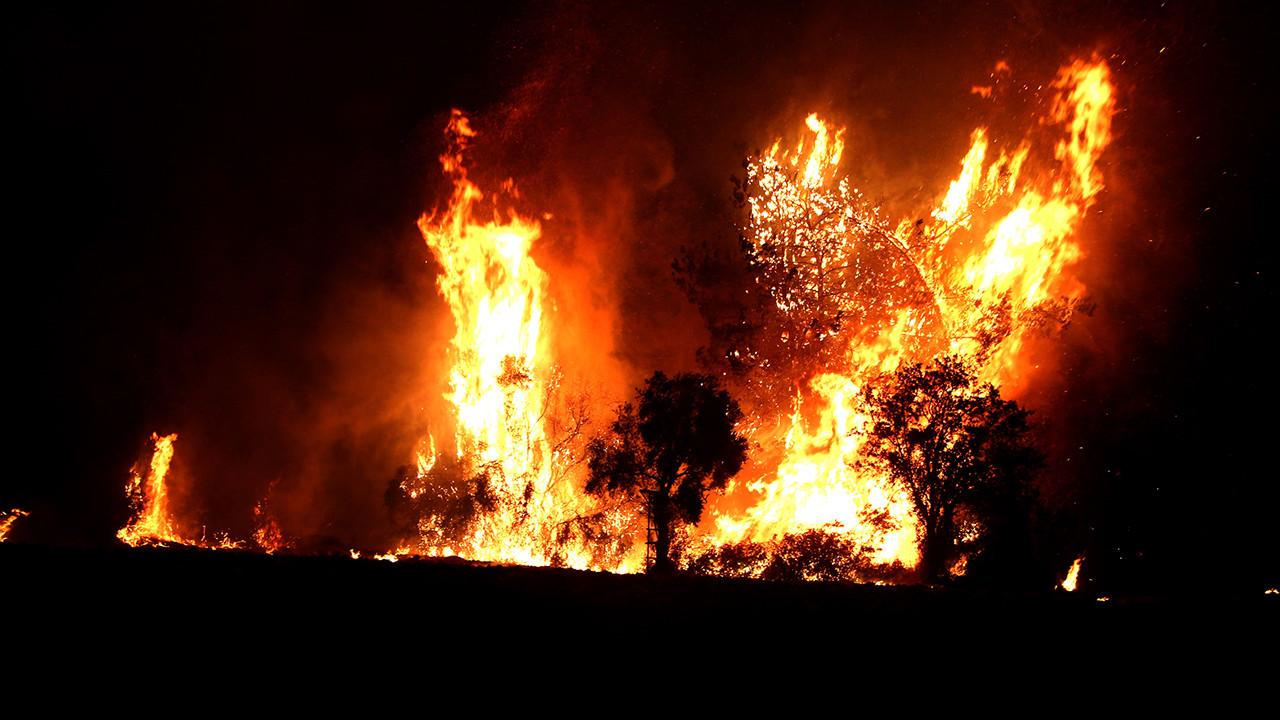 Osmaniye'de çıkan orman yangını sürüyor!