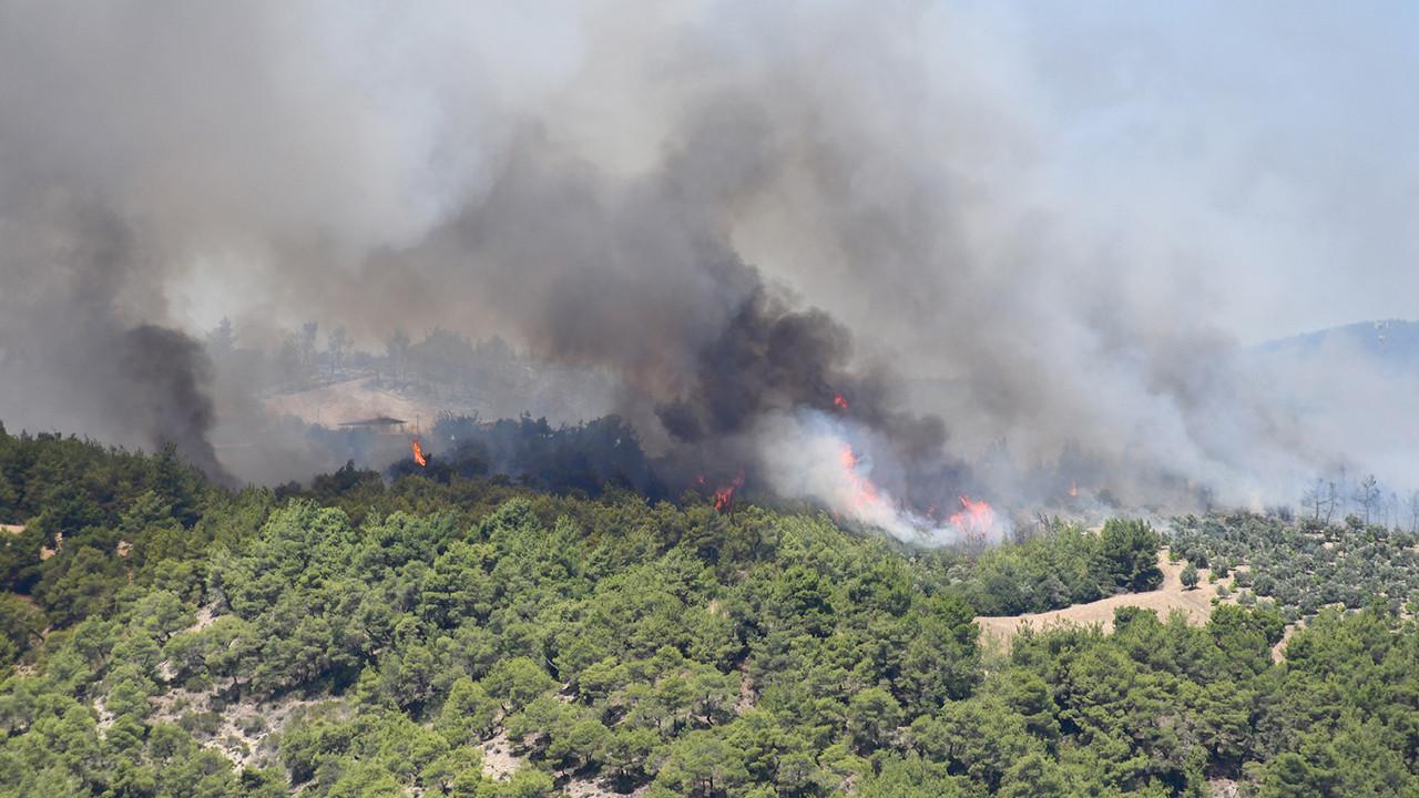 Adana, Kütahya ve Köyceğiz'deki orman yangınları kontrol altına alındı