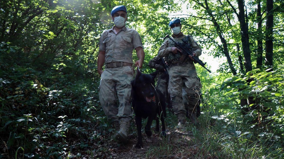 Ormanlar havadan ve karadan mercek altında Jandarma ormanları drone ve helikopter ile denetliyor - Sayfa 3