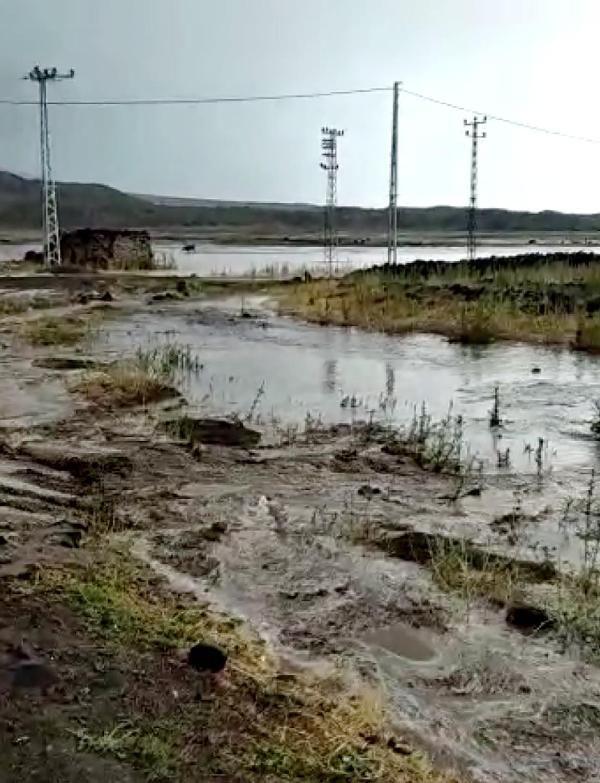 Ağrı Doğubayazıt'ta sel; Evler ve tarım arazileri su altında kaldı - Sayfa 3