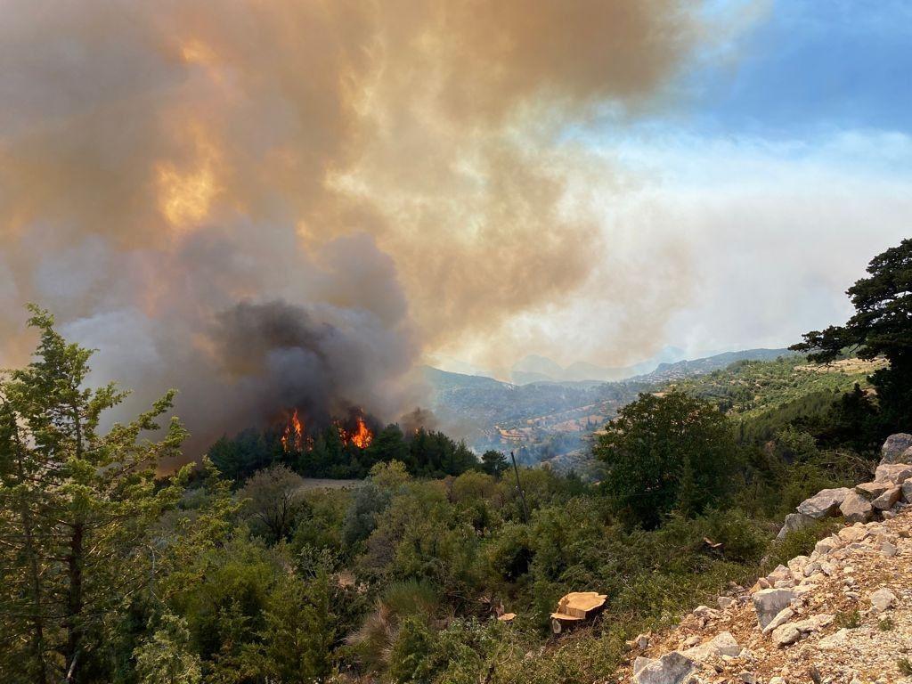Orman yangınları sigorta kapsamında mı? - Sayfa 2