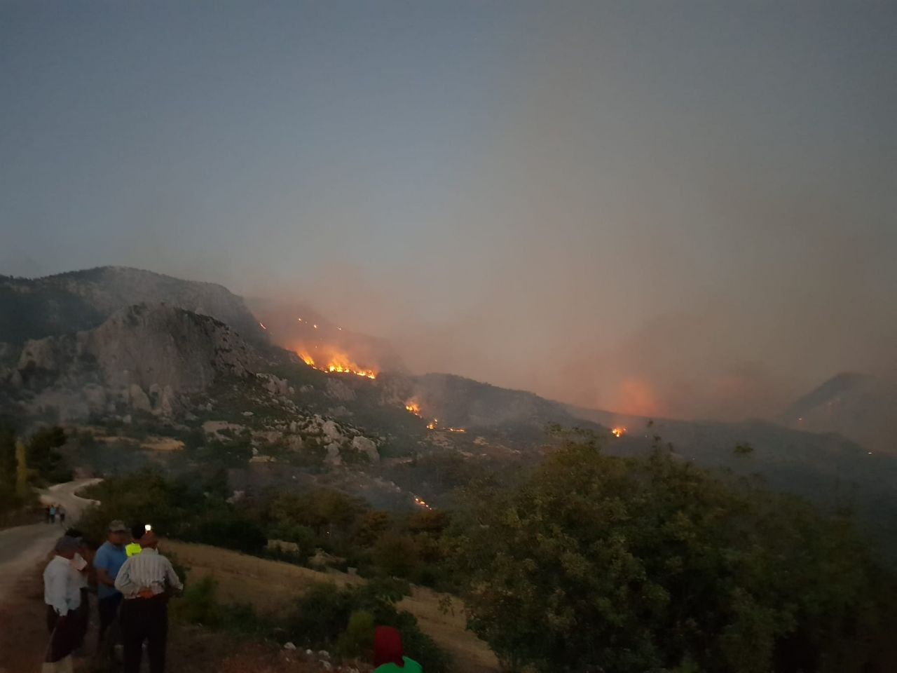Orman yangınları sigorta kapsamında mı? - Sayfa 1