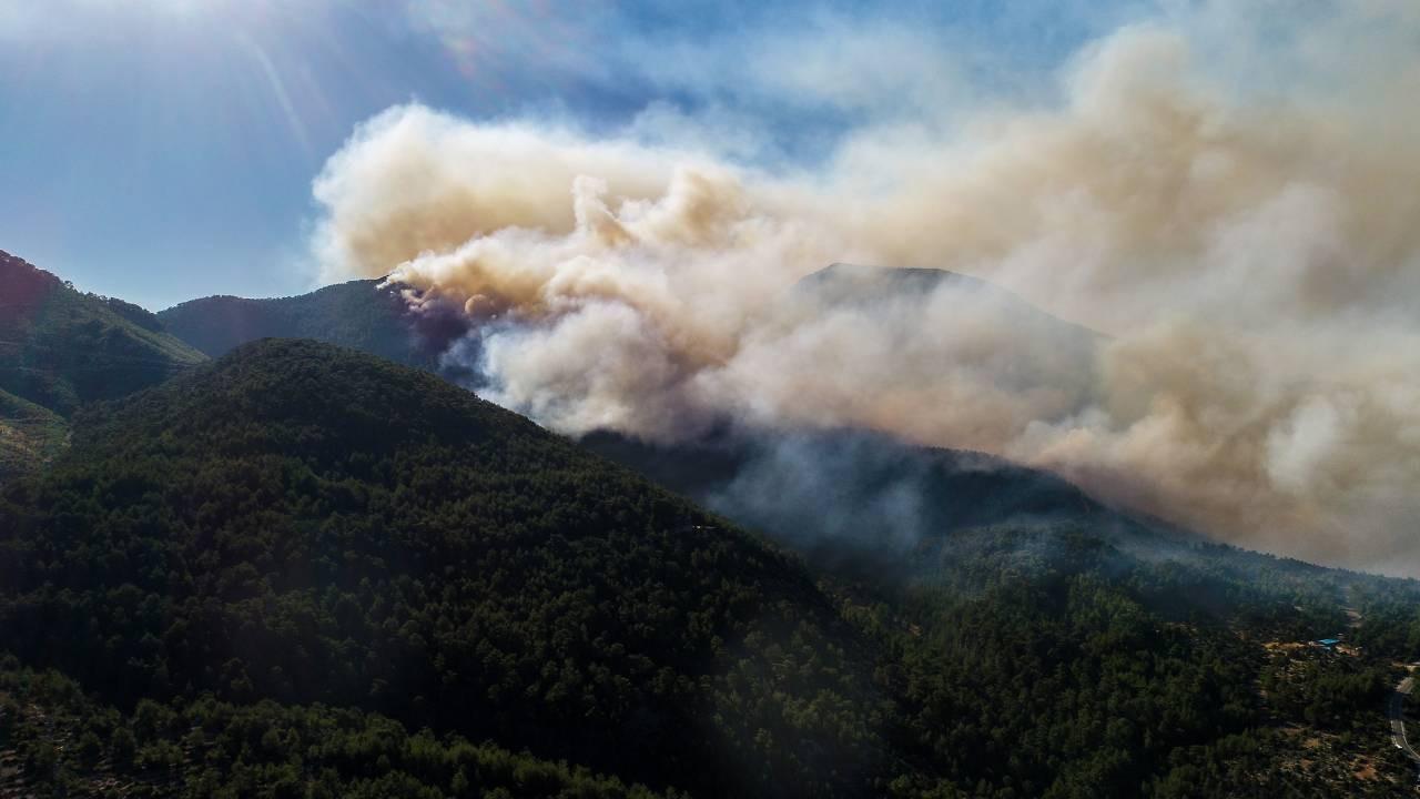 Bir ilde daha orman yangını!