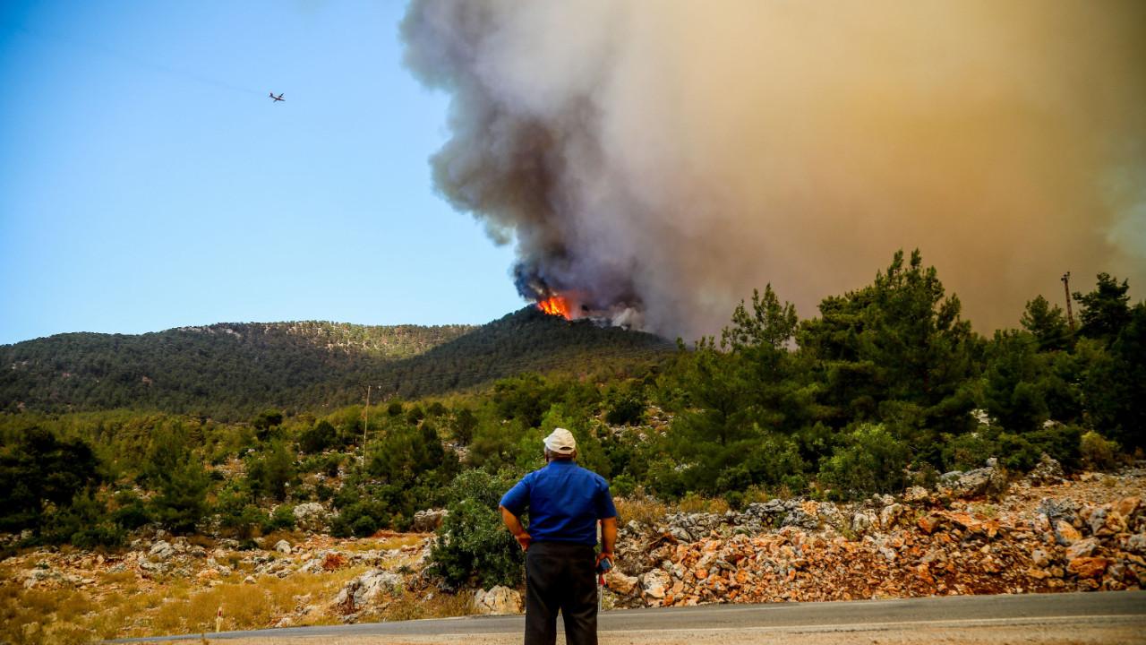 Orman Genel Müdürü: 144 orman yangınının 134'ü kontrol altına alındı