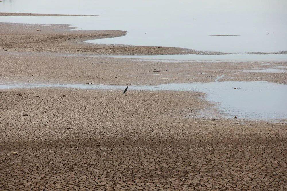 Adıyaman'da kuraklık alarmı: Kent merkezinde içme suyu dönüşümlü olarak veriliyor - Sayfa 3
